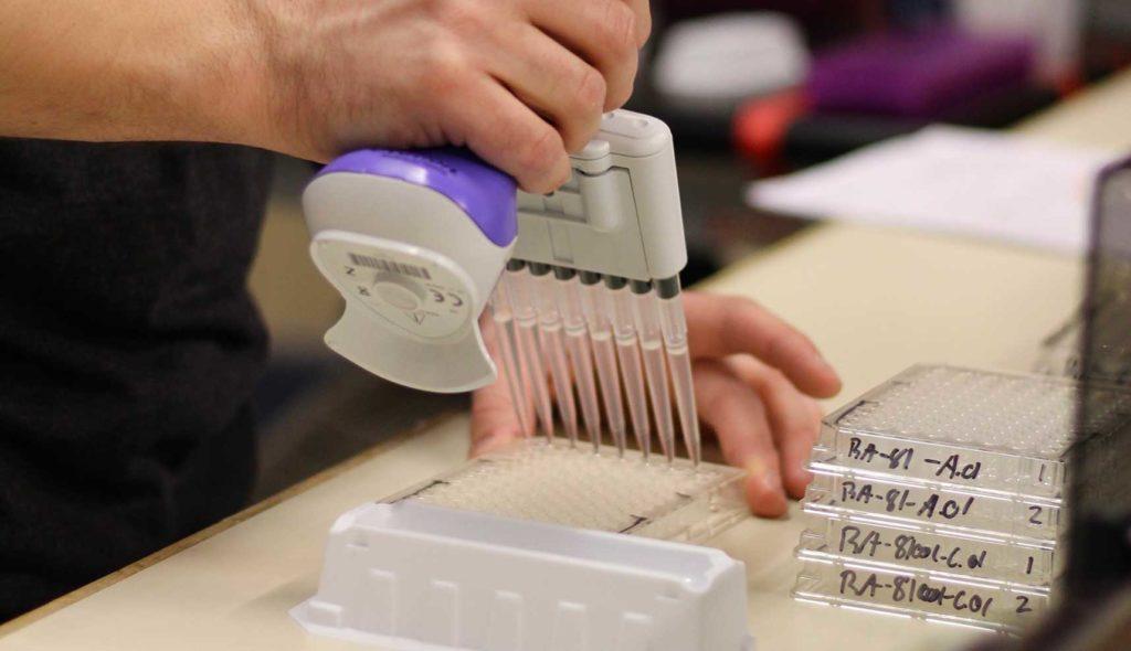 Antibody Sequencing Services